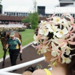 Orchid Fascinator
